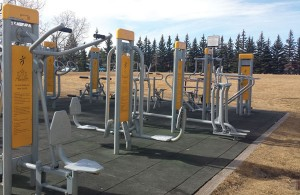 These outdoor fitness machines behind the Louise Riley Library next to North Hill Mall are a great way for you to get some Vitamin D, fresh air and get in a killer workout | Photo by Heather Macarone